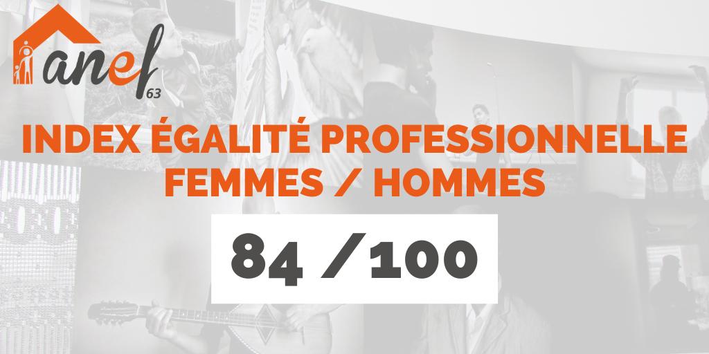 Index égalité professionnelle 2019 ANEF 63